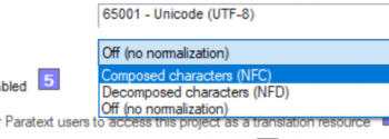 Normalization Feature