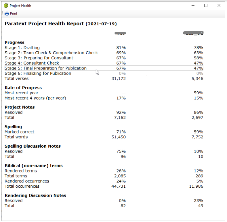 two column project health report
